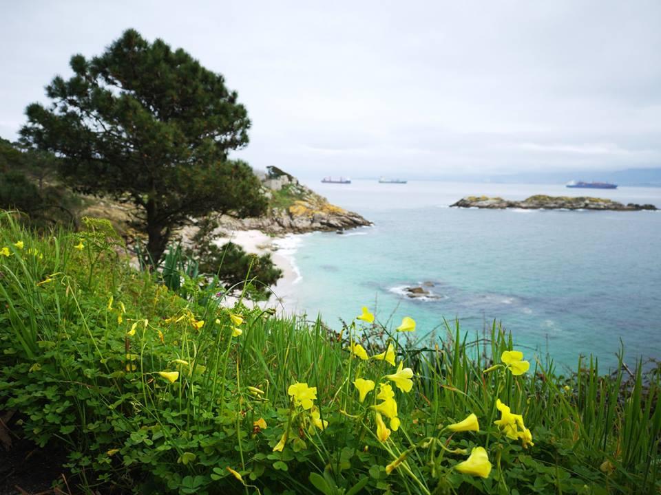 Visita-las-Islas-Cíes-de-Galicia
