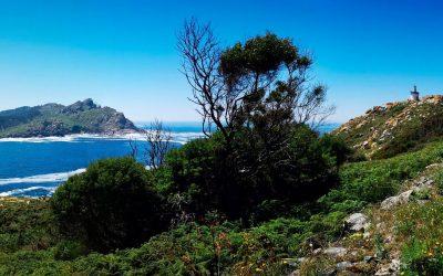 Mar de Ons organiza viajes a la Isla de Ons durante todo el verano