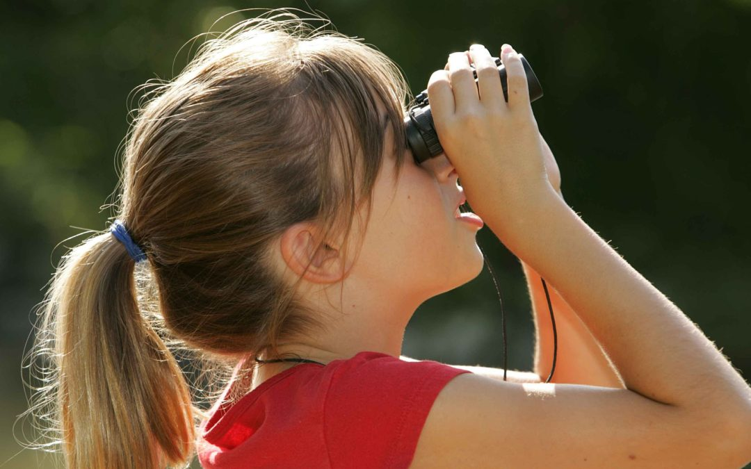 Birdwatching on Cíes and Ons